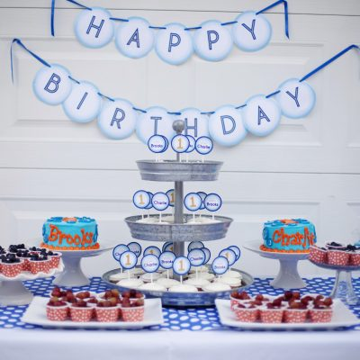 Bubble Birthday Party Ideas- A 1st Birthday
