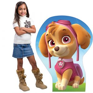 paw patrol party supplies skye party supplies