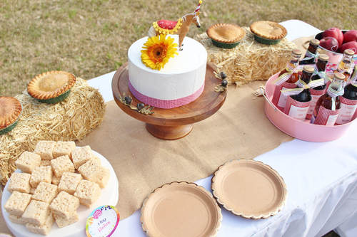 Western Tablescape Featuring a Horse Cake Topper