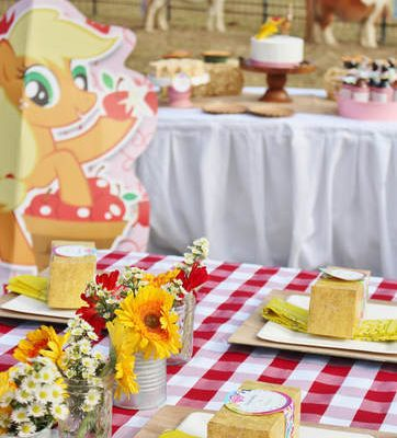 How to Host an Applejack My Little Pony Party