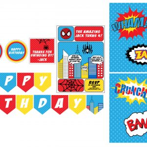 Spiderman Birthday Party Package