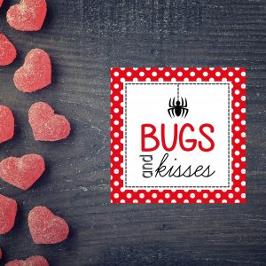 """Bugs & Kisses"" Valentine's Day Favor Tag- Boy"