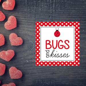 """Bugs and Kisses"" Valentine's Day Card- Girl"