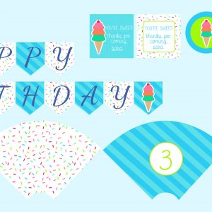 Teal/Pink Ice Cream Birthday Party Package