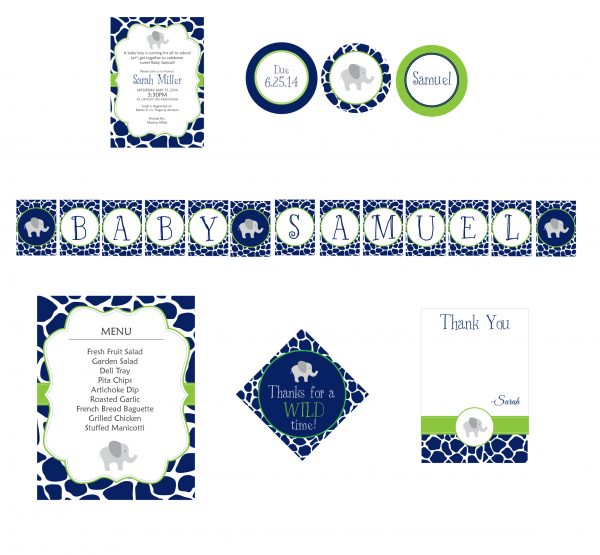 Safari Chic Baby Shower Package- Blue/Green