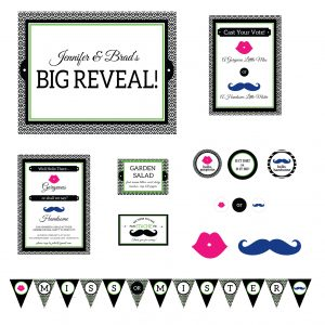 Mustaches & Lips Gender Reveal Party Package- Pink/Blue