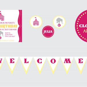 Circus Birthday Party Theme- Pink