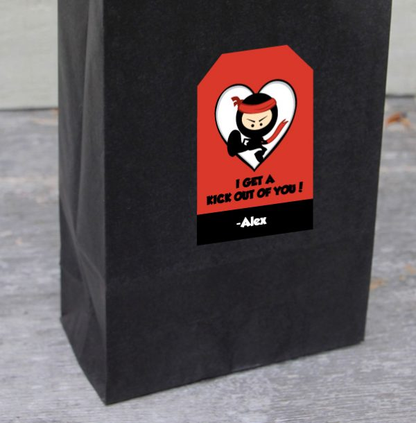 I Get a Kick Out of You Valentines- Ninja Theme Valentines