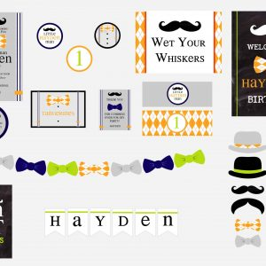 Little Hipster Man Birthday Party Package