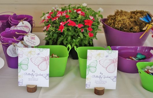 build a butterfly garden at a butterfly party