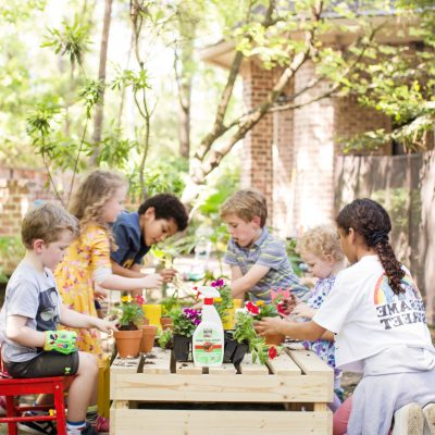 3 Simple Tips for Hosting a Garden Planting Party