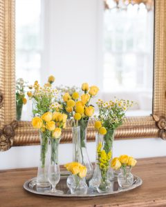 grouping of yellow flowers