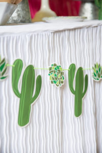 cactus banner for a fiesta party