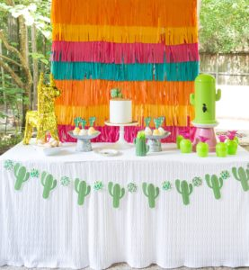 cactus birthday party ideas