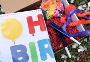 birthday party parade kit